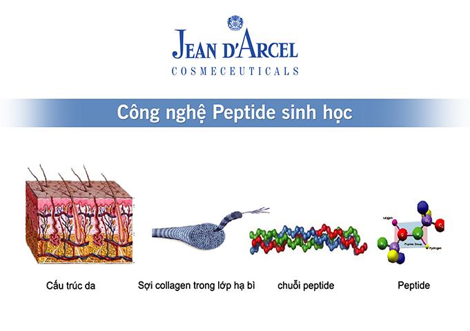 Giới thiệu Jean d'Arcel 6